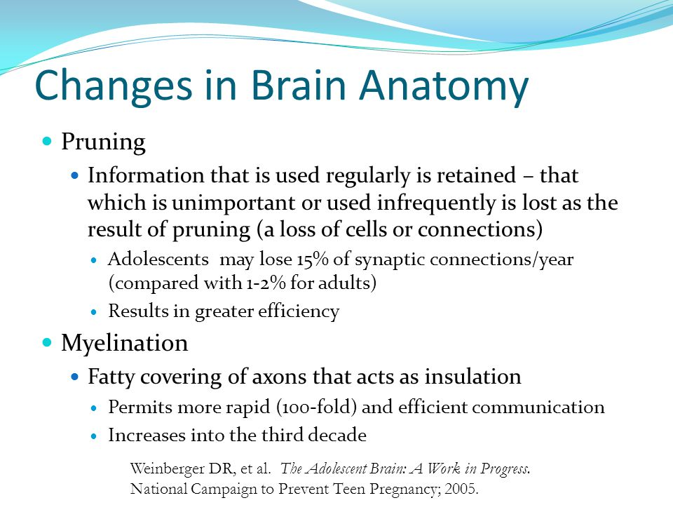Changes in Brain Anatomy Pruning Information that is used regularly is retained – that which is unimportant or used infrequently is lost as the result of pruning (a loss of cells or connections) Adolescents may lose 15% of synaptic connections/year (compared with 1-2% for adults) Results in greater efficiency Myelination Fatty covering of axons that acts as insulation Permits more rapid (100-fold) and efficient communication Increases into the third decade Weinberger DR, et al.