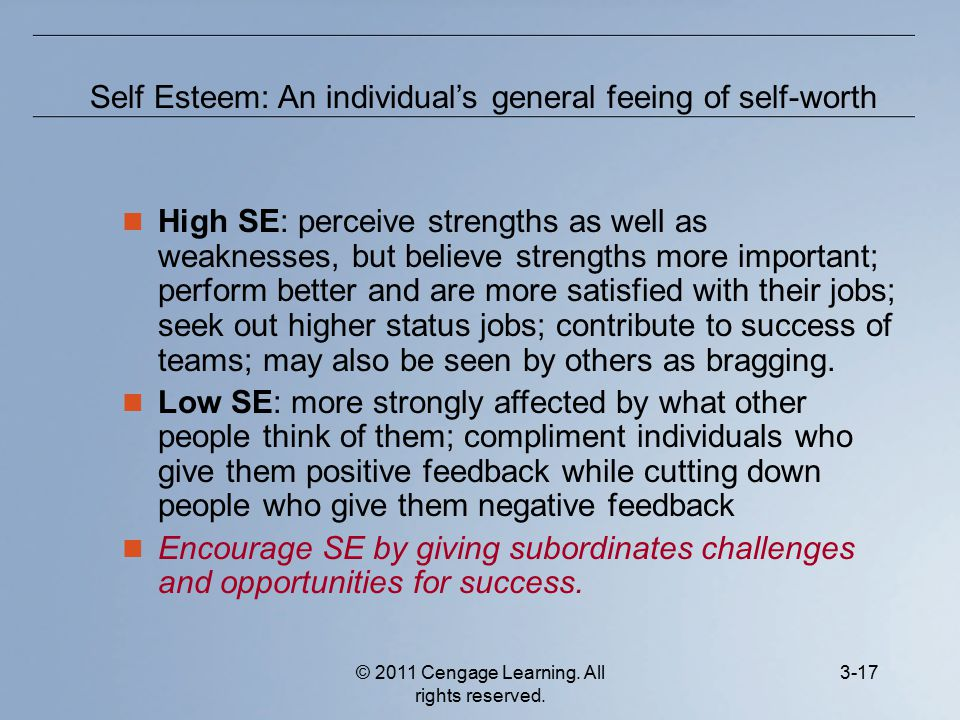 © 2011 Cengage Learning. All rights reserved. 3-17 High SE: perceive strengths as well as weaknesses, but believe strengths more important; perform be