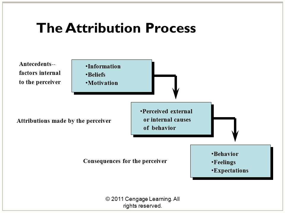 © 2011 Cengage Learning. All rights reserved. The Attribution Process Antecedents-- factors internal to the perceiver Attributions made by the perceiv