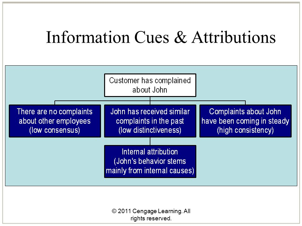 © 2011 Cengage Learning. All rights reserved. Information Cues & Attributions