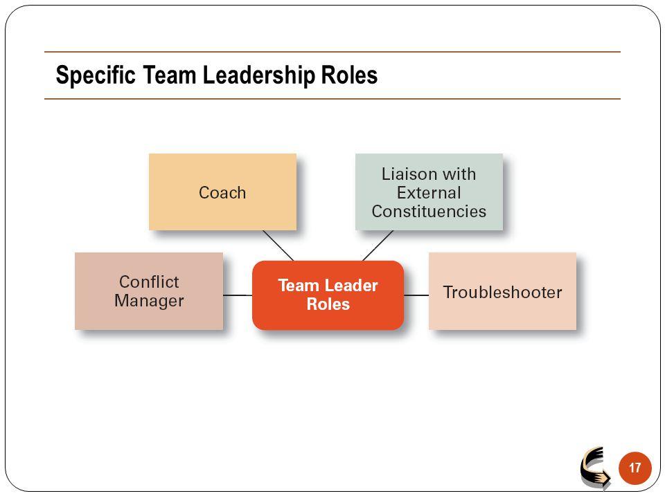 Specific Team Leadership Roles 17