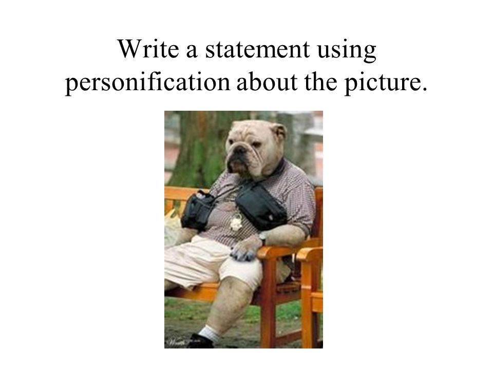 Write a statement using personification about the picture.