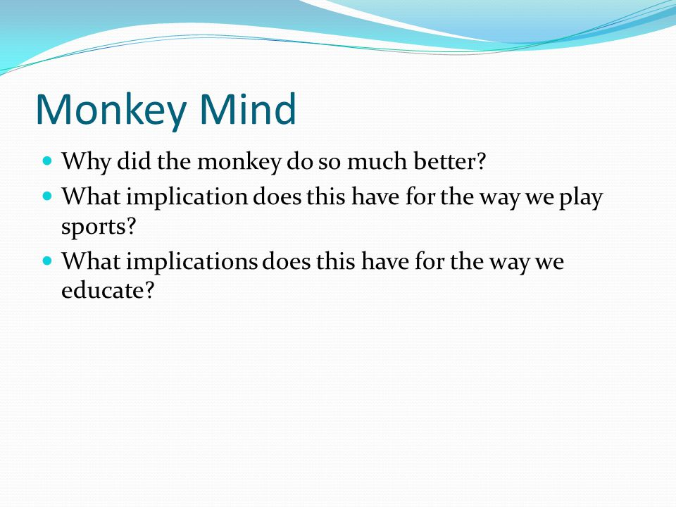 Monkey Mind Why did the monkey do so much better.
