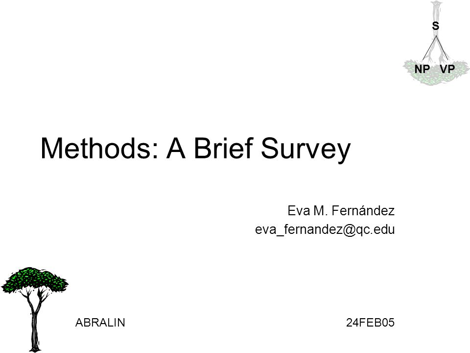Methods: A Brief Survey Eva M. Fernández eva_fernandez@qc.edu ABRALIN24FEB05 S NPVP