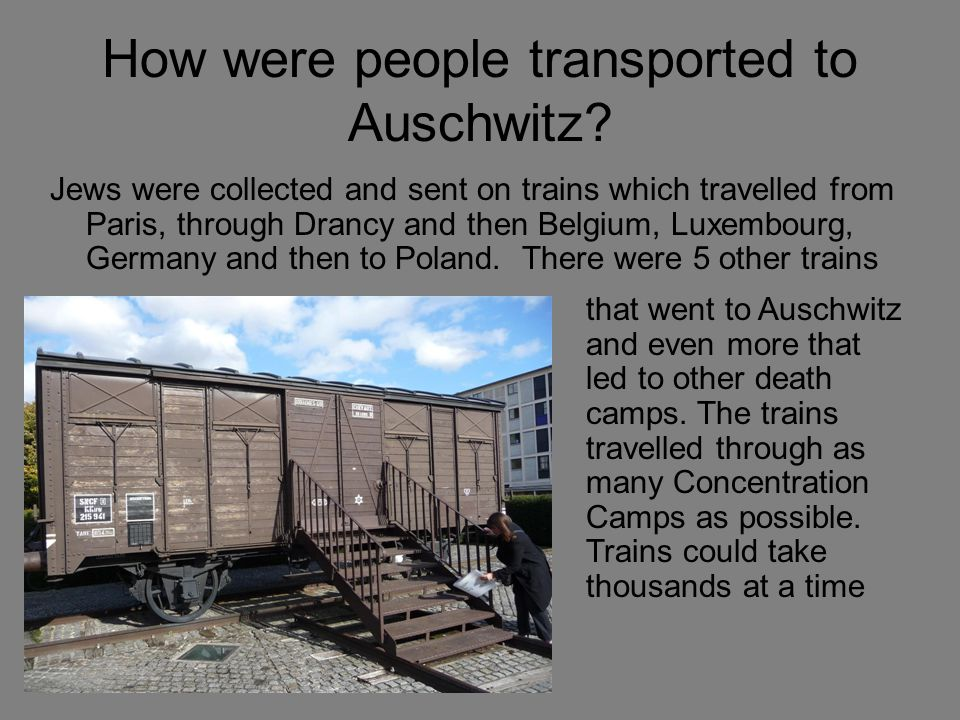 How were people transported to Auschwitz.