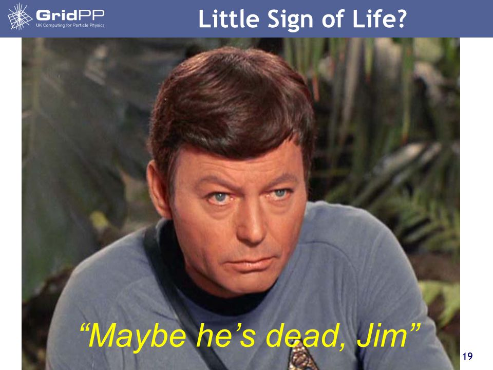 19 Little Sign of Life? Maybe he's dead, Jim