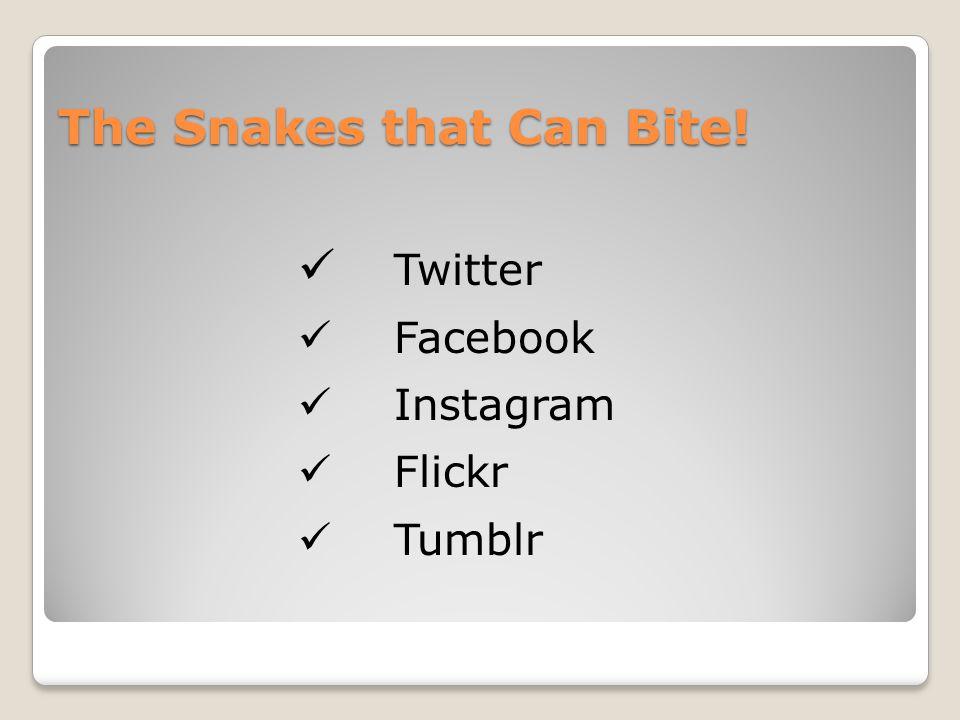 The Snakes that Can Bite! Twitter Facebook Instagram Flickr Tumblr