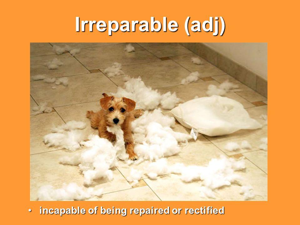 Irreparable (adj) incapable of being repaired or rectifiedincapable of being repaired or rectified