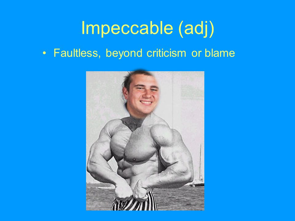 Impeccable (adj) Faultless, beyond criticism or blame