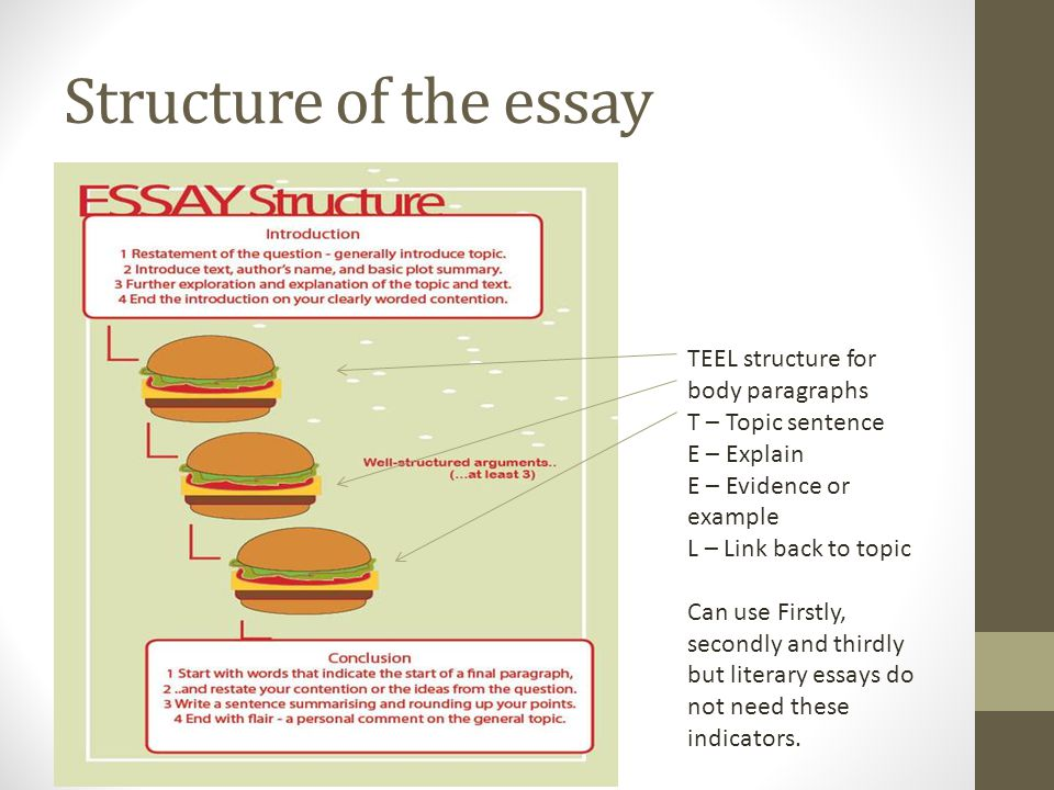 Structure of the essay TEEL structure for body paragraphs T – Topic sentence E – Explain E – Evidence or example L – Link back to topic Can use Firstl
