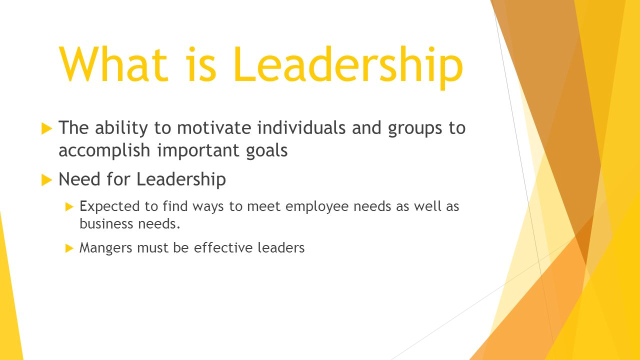 What is Leadership  The ability to motivate individuals and groups to accomplish important goals  Need for Leadership  Expected to find ways to mee