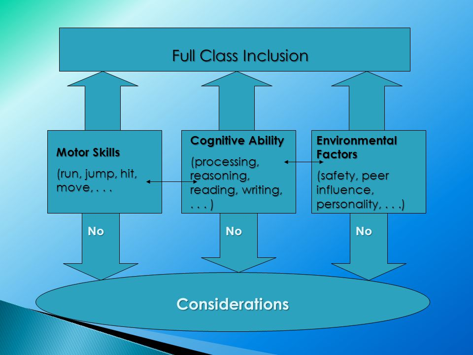 Full Class Inclusion Motor Skills (run, jump, hit, move,...