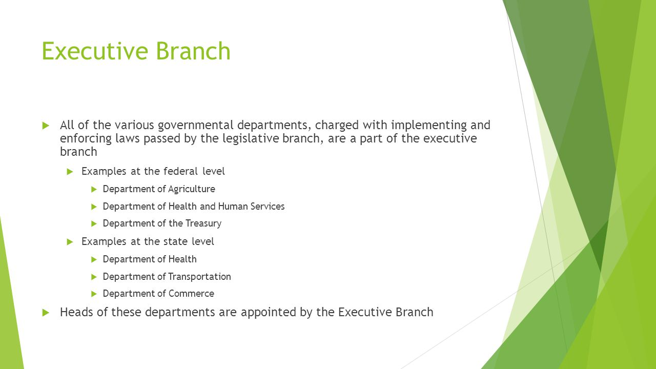 Executive Branch  All of the various governmental departments, charged with implementing and enforcing laws passed by the legislative branch, are a part of the executive branch  Examples at the federal level  Department of Agriculture  Department of Health and Human Services  Department of the Treasury  Examples at the state level  Department of Health  Department of Transportation  Department of Commerce  Heads of these departments are appointed by the Executive Branch
