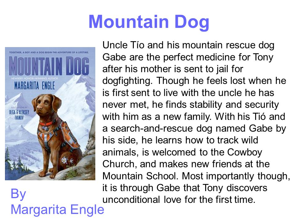 Mountain Dog By Margarita Engle Uncle Tío and his mountain rescue dog Gabe are the perfect medicine for Tony after his mother is sent to jail for dogf