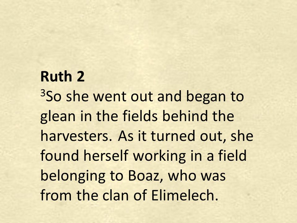 Ruth 2 3 So she went out and began to glean in the fields behind the harvesters. As it turned out, she found herself working in a field belonging to B