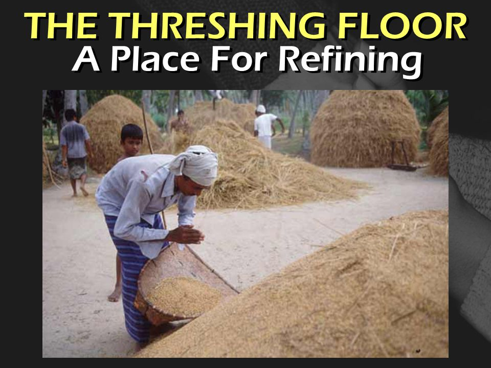 THE THRESHING FLOOR A Place For Refining