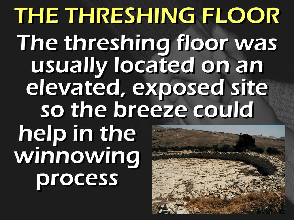 THE THRESHING FLOOR The threshing floor was usually located on an elevated, exposed site so the breeze could help in the winnowing process