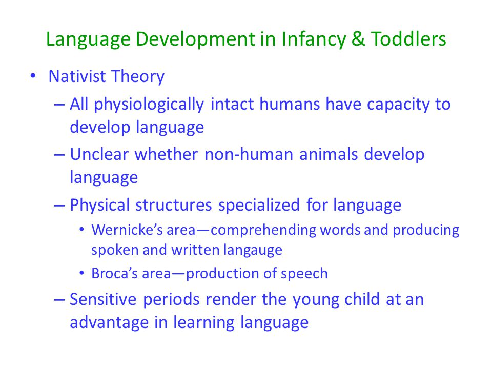 Language Development in Infancy & Toddlers Nativist Theory – All physiologically intact humans have capacity to develop language – Unclear whether non-human animals develop language – Physical structures specialized for language Wernicke's area—comprehending words and producing spoken and written langauge Broca's area—production of speech – Sensitive periods render the young child at an advantage in learning language