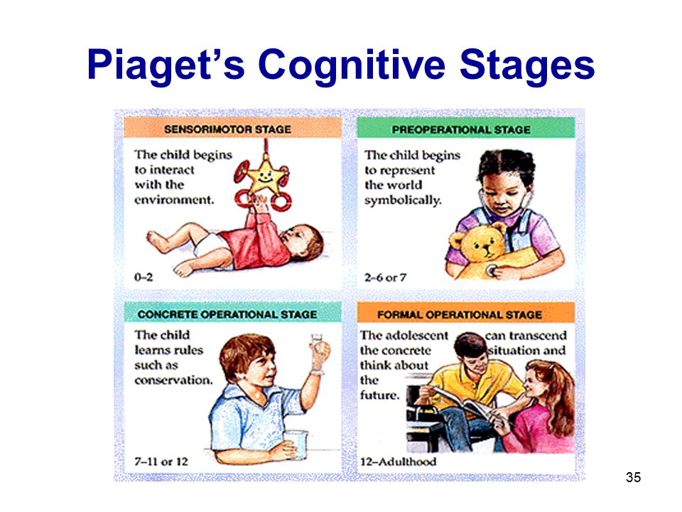 35 Piaget's Cognitive Stages