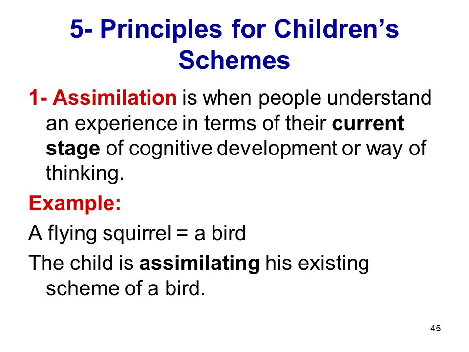 45 5- Principles for Children's Schemes 1- Assimilation is when people understand an experience in terms of their current stage of cognitive developme