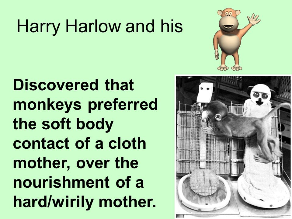 Harry Harlow and his Discovered that monkeys preferred the soft body contact of a cloth mother, over the nourishment of a hard/wirily mother.