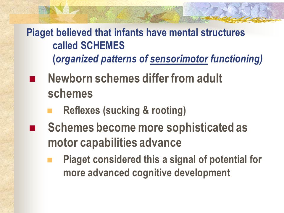 Piaget believed that infants have mental structures called SCHEMES ( organized patterns of sensorimotor functioning) Newborn schemes differ from adult
