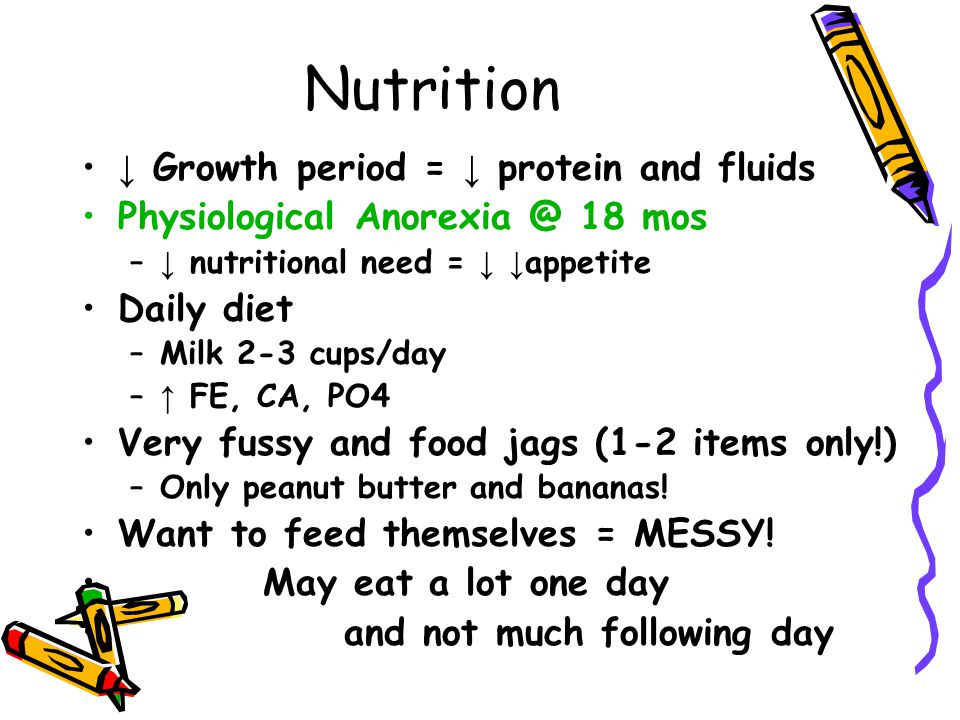 Nutrition ↓ Growth period = ↓ protein and fluids Physiological Anorexia @ 18 mos – ↓ nutritional need = ↓ ↓ appetite Daily diet –Milk 2-3 cups/day – ↑