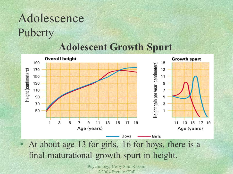 Psychology, 4/e by Saul Kassin ©2004 Prentice Hall Adolescence Puberty Adolescent Growth Spurt §At about age 13 for girls, 16 for boys, there is a fin