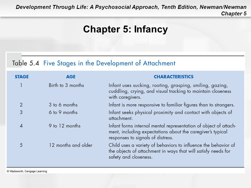 Development Through Life: A Psychosocial Approach, Tenth Edition, Newman/Newman Chapter 5 Chapter 5: Infancy
