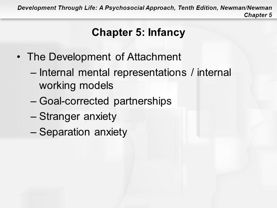 Development Through Life: A Psychosocial Approach, Tenth Edition, Newman/Newman Chapter 5 Chapter 5: Infancy The Development of Attachment –Internal m