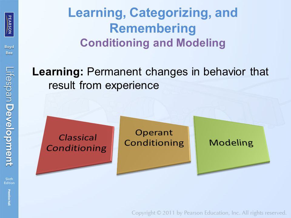 Learning, Categorizing, and Remembering Conditioning and Modeling Learning: Permanent changes in behavior that result from experience