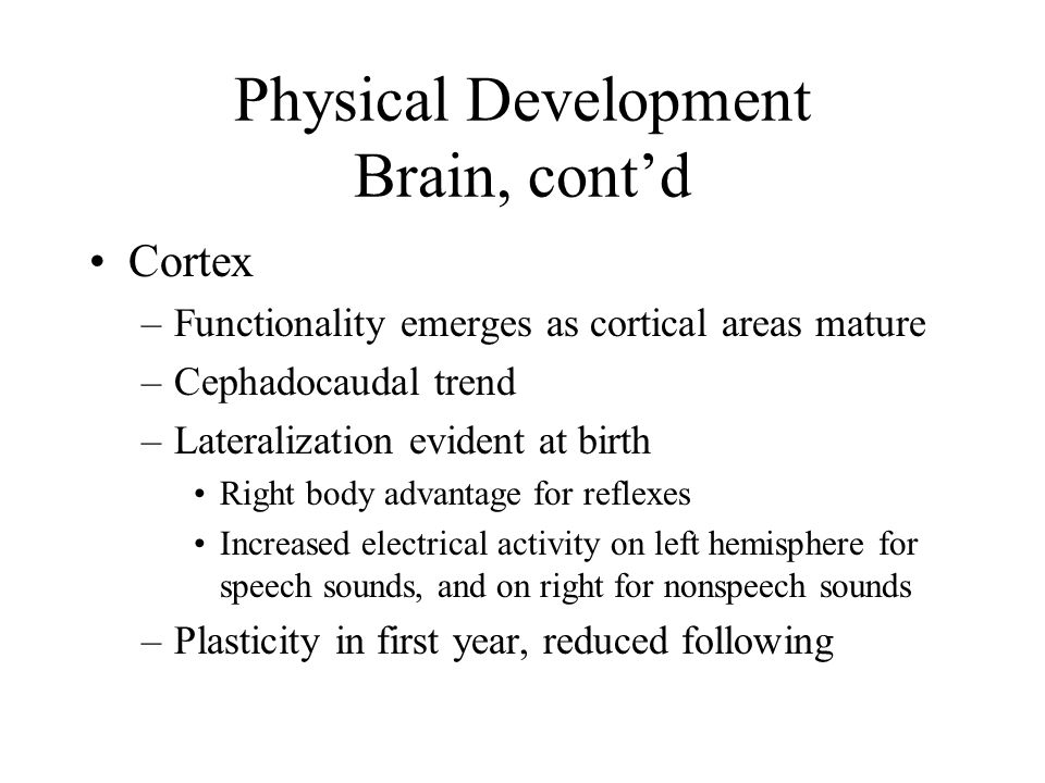 Physical Development Brain, cont'd Cortex –Functionality emerges as cortical areas mature –Cephadocaudal trend –Lateralization evident at birth Right