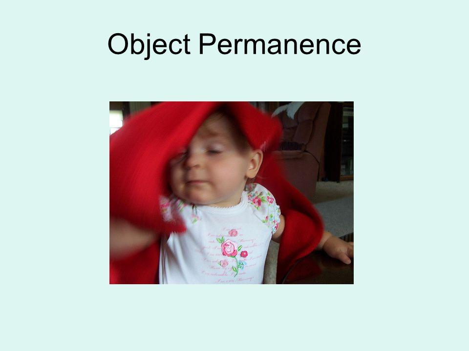 Object Permanence