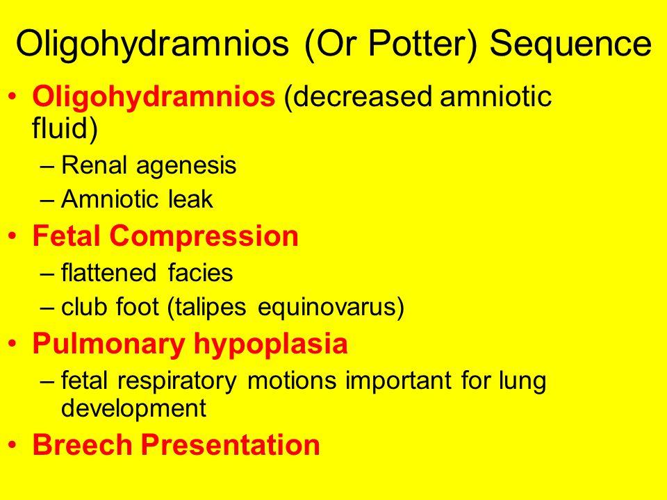 Oligohydramnios (Or Potter) Sequence Oligohydramnios (decreased amniotic fluid) –Renal agenesis –Amniotic leak Fetal Compression –flattened facies –cl