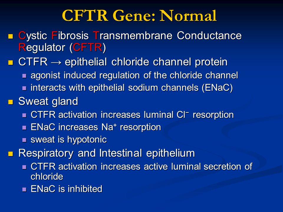 CFTR Gene: Normal Cystic Fibrosis Transmembrane Conductance Regulator (CFTR) Cystic Fibrosis Transmembrane Conductance Regulator (CFTR) CTFR → epithel