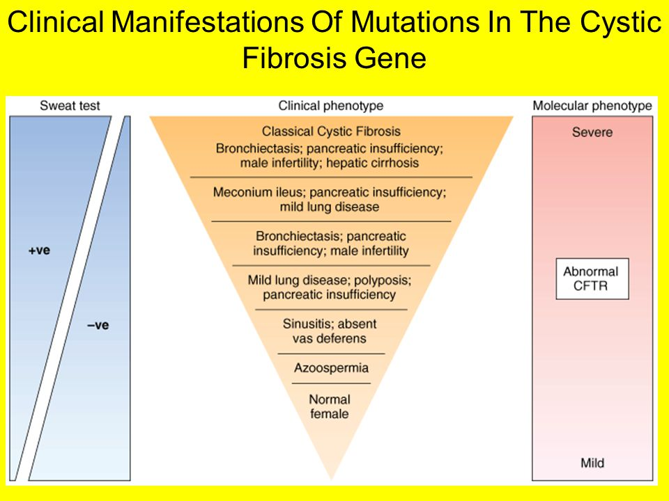Clinical Manifestations Of Mutations In The Cystic Fibrosis Gene