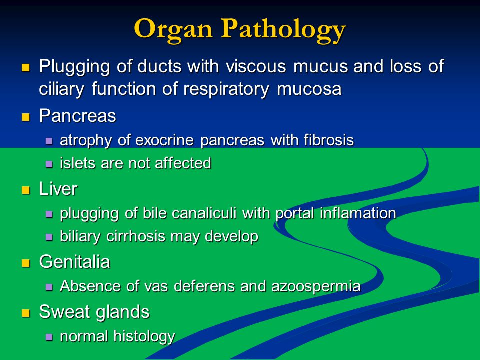 Organ Pathology Plugging of ducts with viscous mucus and loss of ciliary function of respiratory mucosa Plugging of ducts with viscous mucus and loss