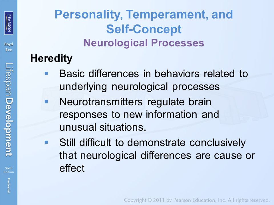 Personality, Temperament, and Self-Concept Neurological Processes Heredity  Basic differences in behaviors related to underlying neurological processes  Neurotransmitters regulate brain responses to new information and unusual situations.