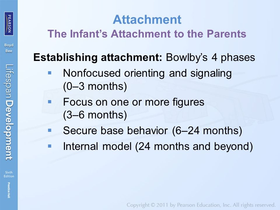 Attachment The Infant's Attachment to the Parents Establishing attachment: Bowlby's 4 phases  Nonfocused orienting and signaling (0–3 months)  Focus on one or more figures (3–6 months)  Secure base behavior (6–24 months)  Internal model (24 months and beyond)