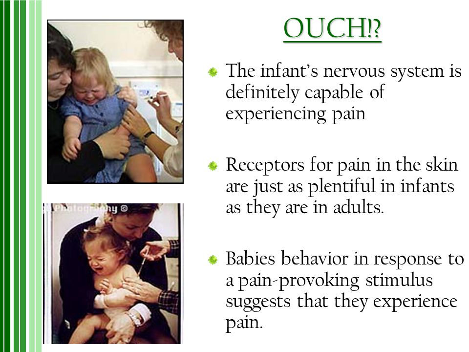 OUCH!? The infant's nervous system is definitely capable of experiencing pain Receptors for pain in the skin are just as plentiful in infants as they