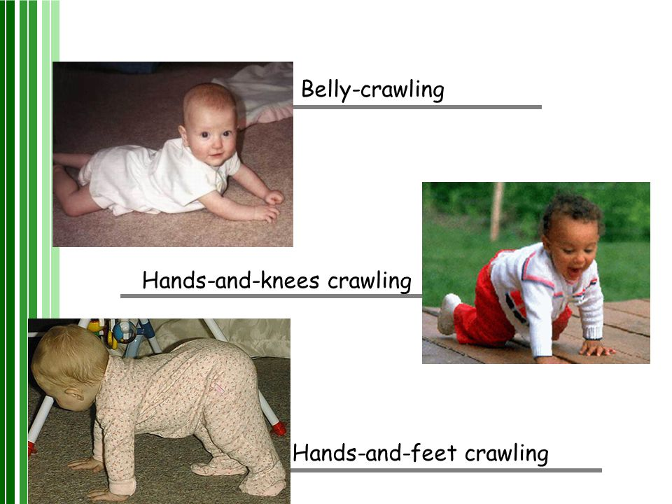 Belly-crawling Hands-and-feet crawling Hands-and-knees crawling
