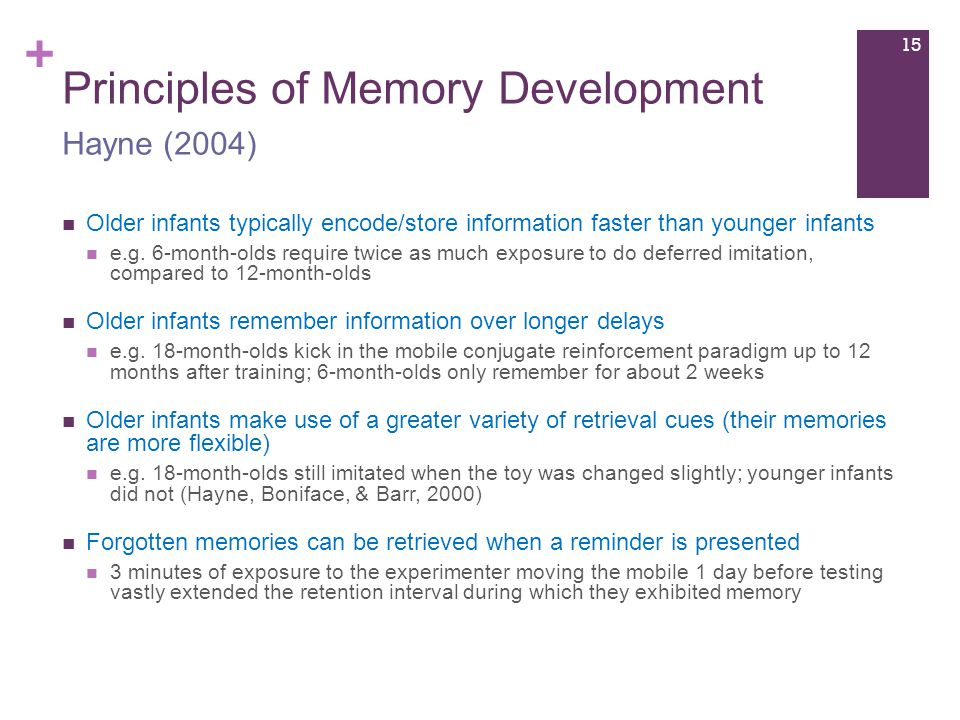 + Principles of Memory Development Older infants typically encode/store information faster than younger infants e.g.