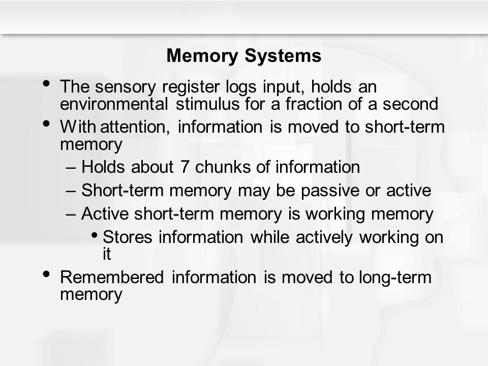 The Child – Explaining Memory Development Conclusions about the development of learning and memory in childhood –Older children are faster information processors and can juggle more information in working memory Maturation of the nervous system leads to improvements in consolidation of memories Older and younger children, however, do not differ in terms of sensory register or long-term memory capacity