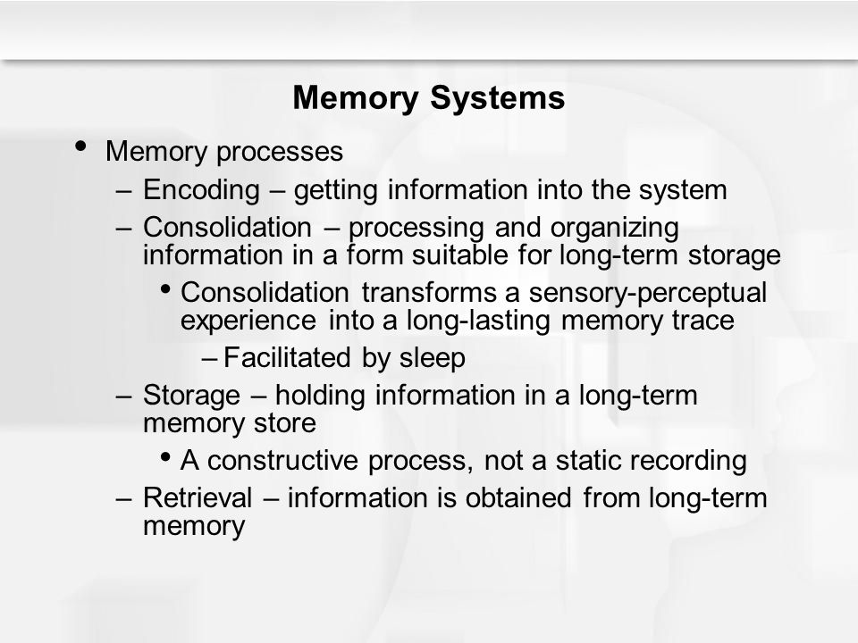 The Child – Explaining Memory Development –Older children know more in general, and their larger knowledge base improves their ability to learn and remember A richer knowledge base allows faster and more efficient processing of information related to the domain of knowledge