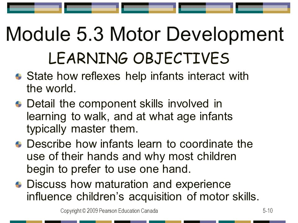 Copyright © 2009 Pearson Education Canada5-10 Module 5.3 Motor Development LEARNING OBJECTIVES State how reflexes help infants interact with the world