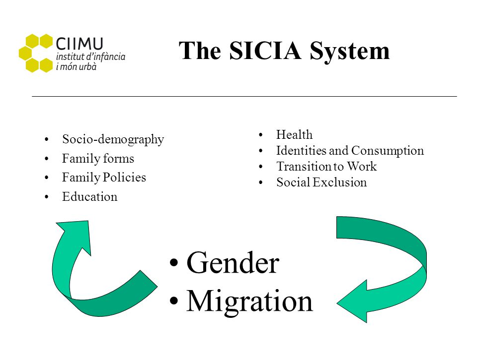 The SICIA System Socio-demography Family forms Family Policies Education Health Identities and Consumption Transition to Work Social Exclusion Gender