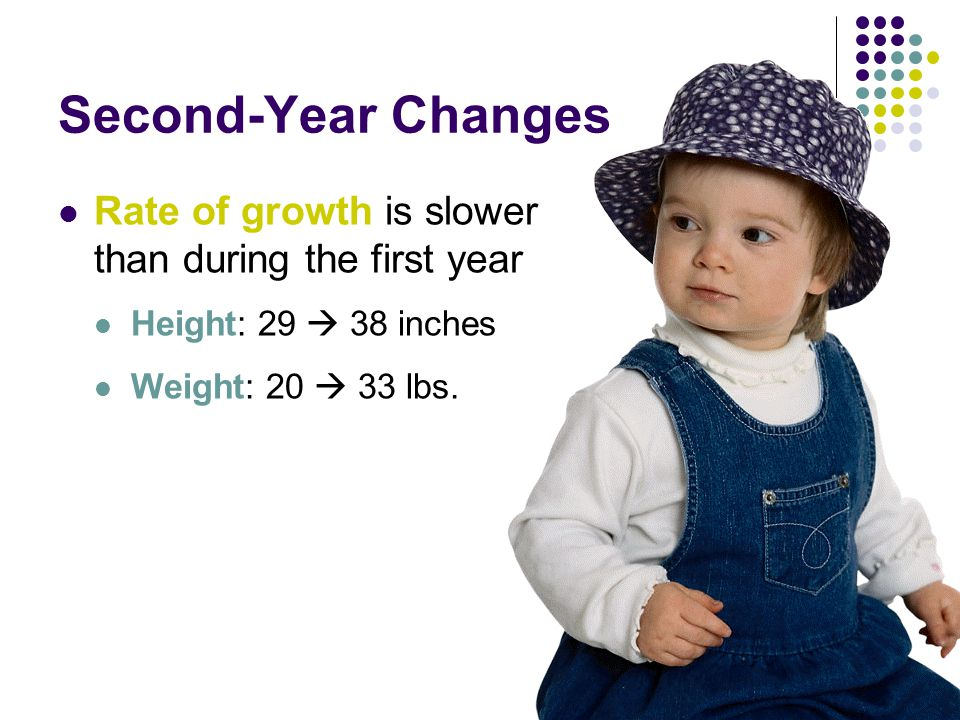 Second-Year Changes Rate of growth is slower than during the first year Height: 29  38 inches Weight: 20  33 lbs.