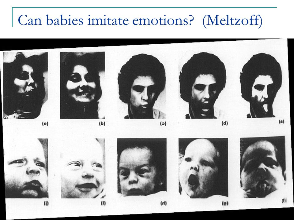 7 Can babies imitate emotions? (Meltzoff)
