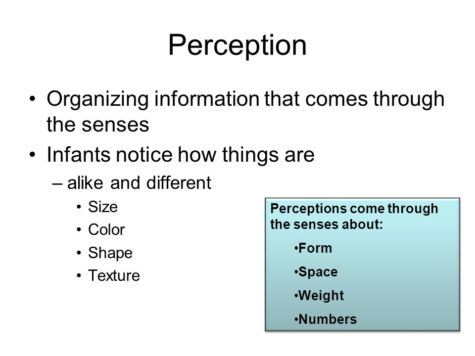 Perception Organizing information that comes through the senses Infants notice how things are –alike and different Size Color Shape Texture Perception