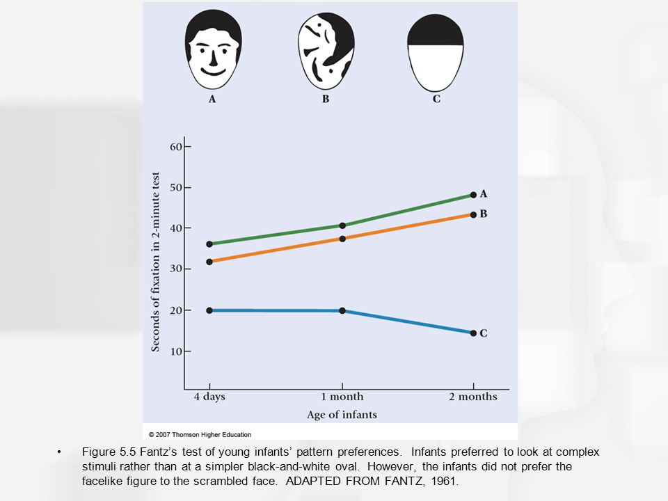 Figure 5.5 Fantz's test of young infants' pattern preferences. Infants preferred to look at complex stimuli rather than at a simpler black-and-white o